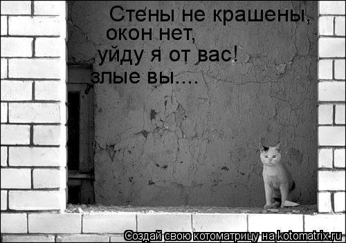 Котоматрица: Стены не крашены, окон нет, уйду я от вас! злые вы....
