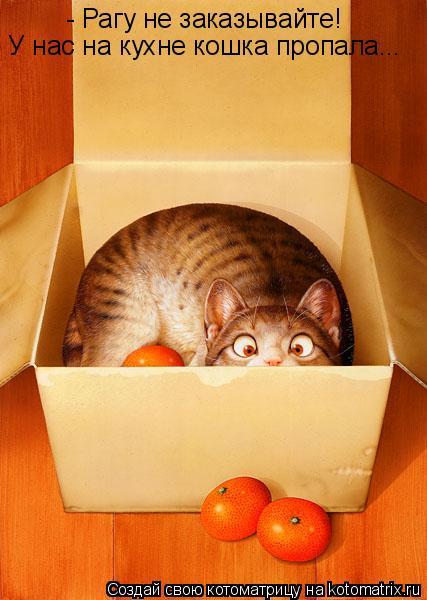 Котоматрица: - Рагу не заказывайте! У нас на кухне кошка пропала...