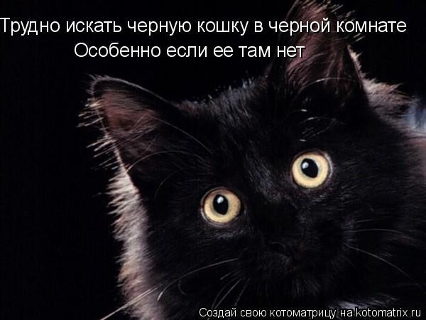 Котоматрица: Трудно искать черную кошку в черной комнате Особенно если ее там нет