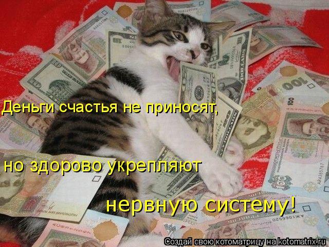 Котоматрица: Деньги счастья не приносят,  но здорово укрепляют  нервную систему!