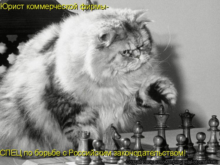 Котоматрица: Юрист коммерческой фирмы- СПЕЦ по борьбе с Российским законодательством!