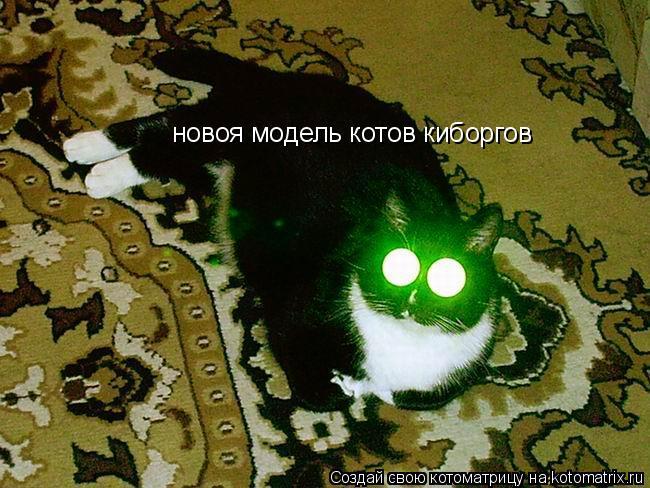 Котоматрица: новоя модель котов киборгов