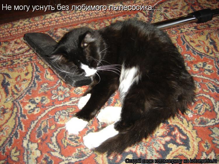 Котоматрица: Не могу уснуть без любимого пылесосика....