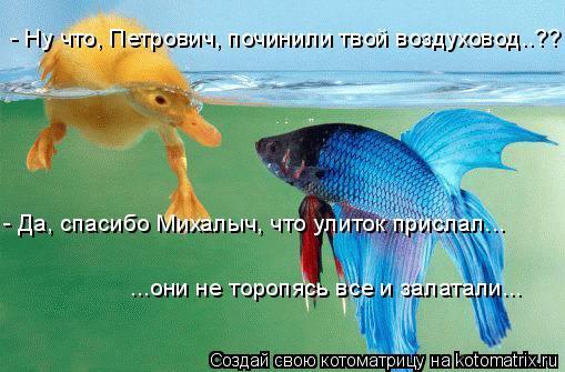 Котоматрица: - Ну что, Петрович, починили твой воздуховод..?? - Да, спасибо Михалыч, что улиток прислал... ...они не торопясь все и залатали...