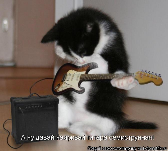 Котоматрица: А ну давай наяривай гитара семиструнная!