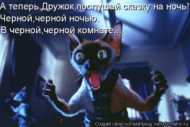 Котоматрица: А теперь,Дружок,послушай сказку на ночь! Черной,черной ночью. В черной,черной комнате...
