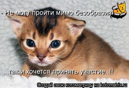 Котоматрица: - Не могу пройти мимо безобразия... ...так и хочется принять участие..!!