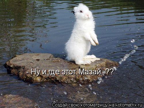 Котоматрица: - Ну и где этот Мазай..??