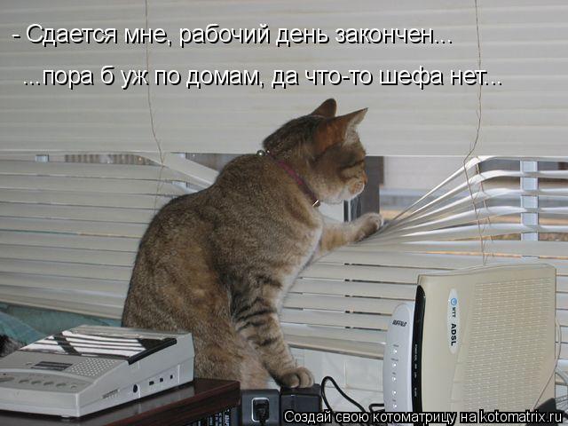 Котоматрица: - Сдается мне, рабочий день закончен... ...пора б уж по домам, да что-то шефа нет...