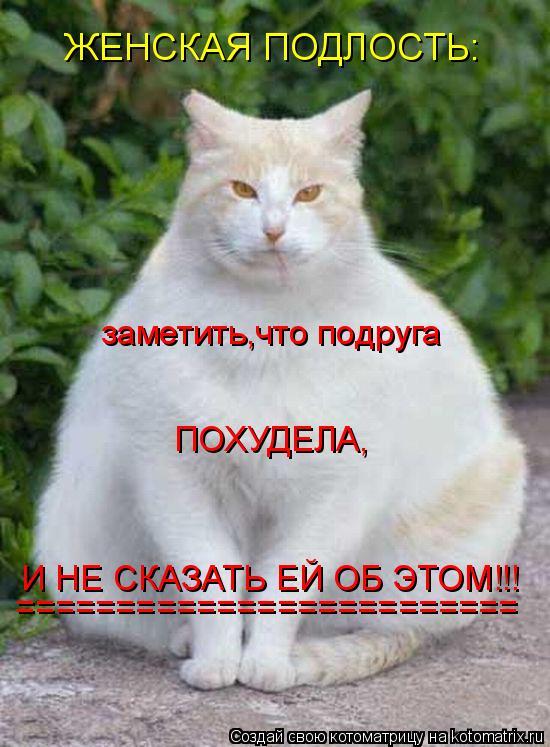 Котоматрица: ЖЕНСКАЯ ПОДЛОСТЬ: заметить,что подруга И НЕ СКАЗАТЬ ЕЙ ОБ ЭТОМ!!! ПОХУДЕЛА, =========================