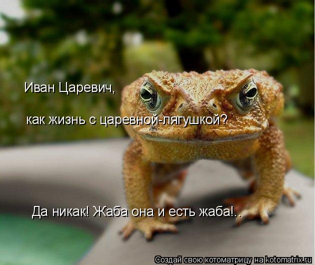 Котоматрица: Иван Царевич,  как жизнь с царевной-лягушкой? Да никак! Жаба она и есть жаба!..