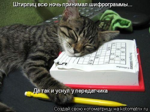 Котоматрица: Штирлиц всю ночь принимал шифрограммы... Да так и уснул у передатчика