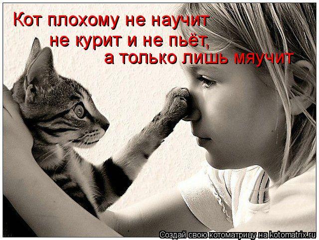 Котоматрица: Кот плохому не научит не курит и не пьёт,  а только лишь мяучит