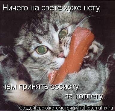 Котоматрица: Ничего на свете хуже нету, чем принять сосиску за котлету...
