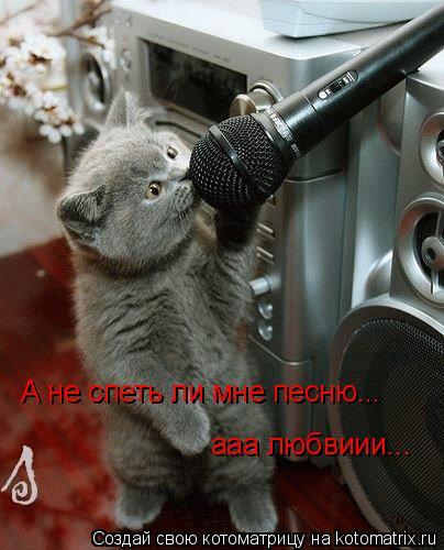 Котоматрица: А не спеть ли мне песню...  ааа любвиии...