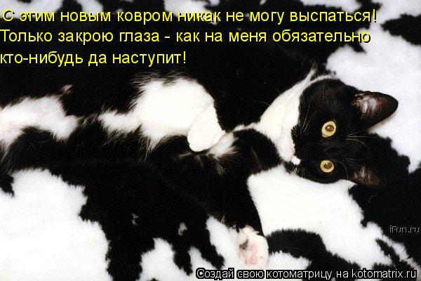 Котоматрица: С этим новым ковром никак не могу выспаться! Только закрою глаза - как на меня обязательно кто-нибудь да наступит!