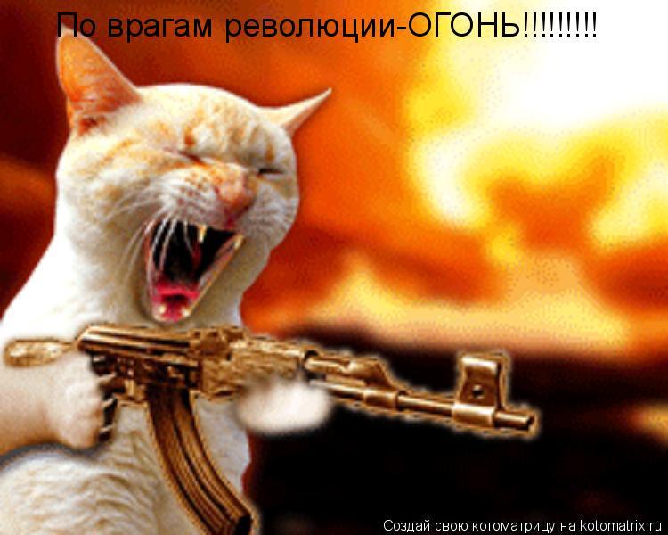 Котоматрица: По врагам революции-ОГОНЬ!!!!!!!!!