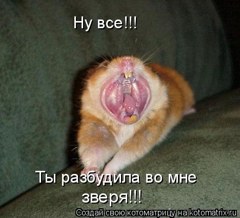 Котоматрица: Ну все!!! Ты разбудила во мне  зверя!!!