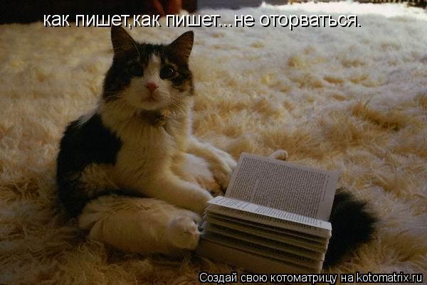 Котоматрица: как пишет,как пишет...не оторваться.