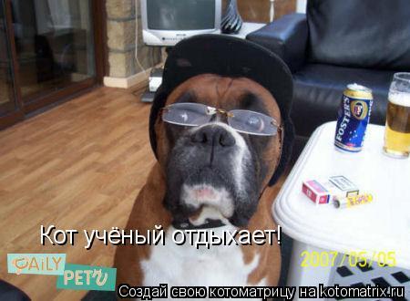 Котоматрица: Кот учёный отдыхает!