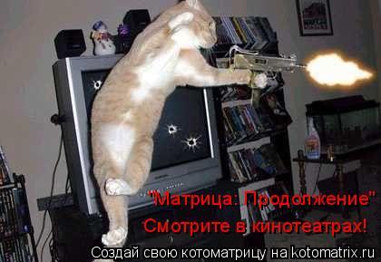 """Котоматрица: """"Матрица: Продолжение""""  Смотрите в кинотеатрах!"""