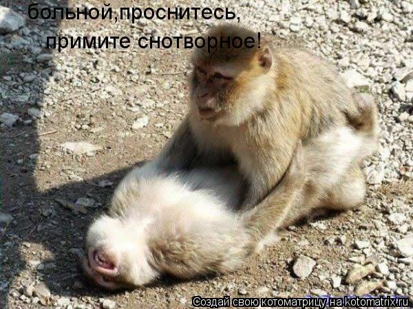Котоматрица: больной,проснитесь, примите снотворное!