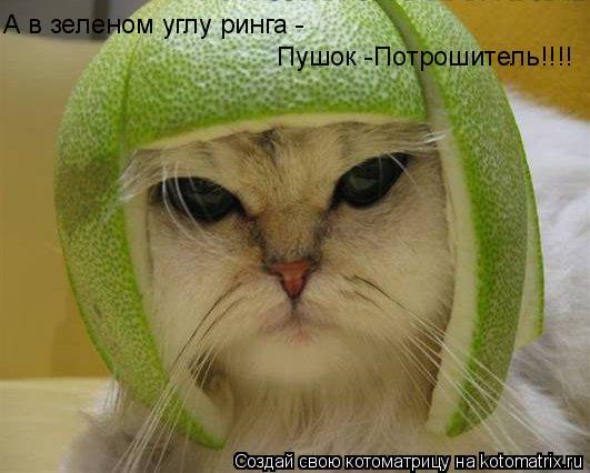 Котоматрица: А в зеленом углу ринга -  Пушок -Потрошитель!!!!