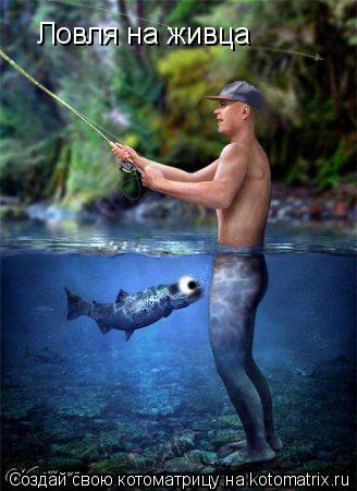 Котоматрица: Ловля на живца