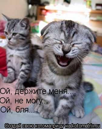 Котоматрица: Ой, держите меня.... Ой, не могу... Ой, не могу... Ой, бля... Ой, бля...