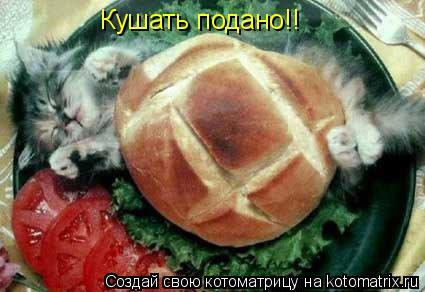 Котоматрица: Кушать подано!!
