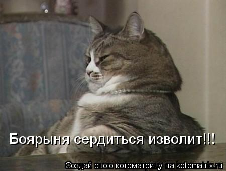 Котоматрица: Боярыня сердиться изволит!!!