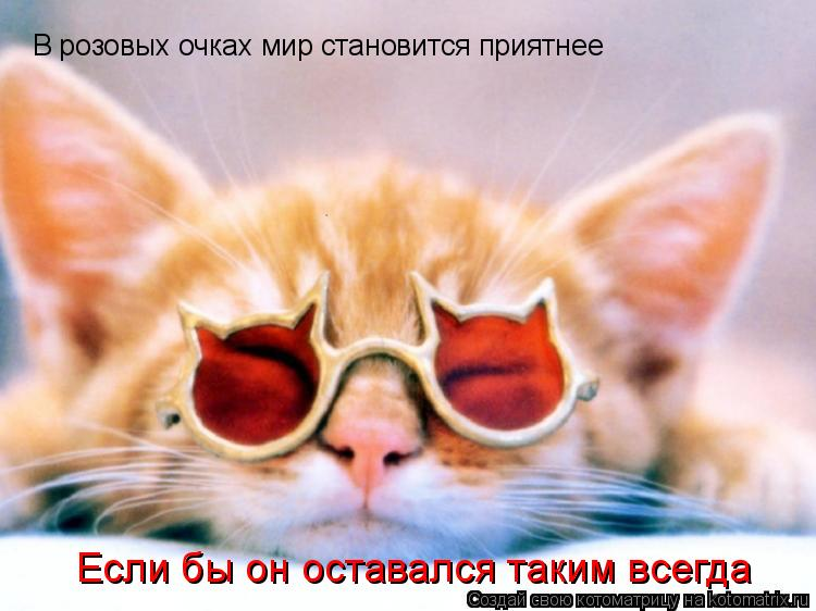 Котоматрица: В розовых очках мир становится приятнее Если бы он оставался таким всегда