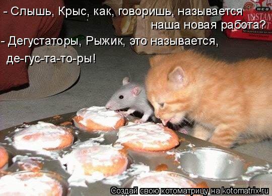 Котоматрица: - Слышь, Крыс, как, говоришь, называется наша новая работа? - Дегустаторы, Рыжик, это называется, де-гус-та-то-ры!
