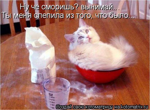 http://kotomatrix.ru/images/lolz/2008/08/25/e.jpg