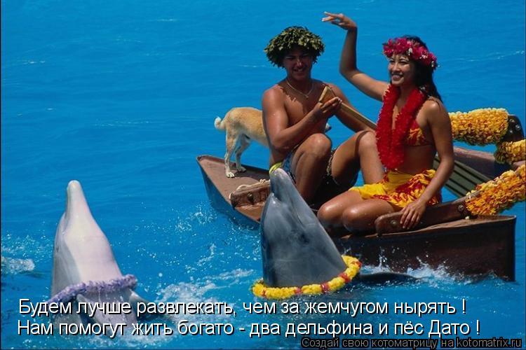 Котоматрица: Будем лучше развлекать, чем за жемчугом нырять ! Нам помогут жить богато - два дельфина и пёс Дато !