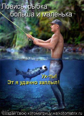Котоматрица: Ловись, рыбка больша и маленька Ух-ты! Эт я удачно заплыл!