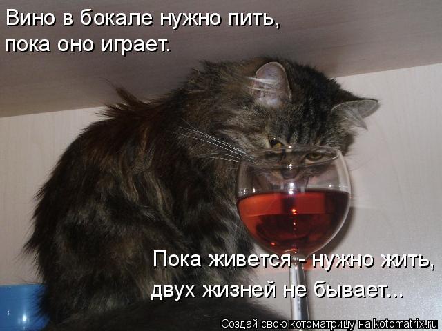 Поздравление за это надо выпить