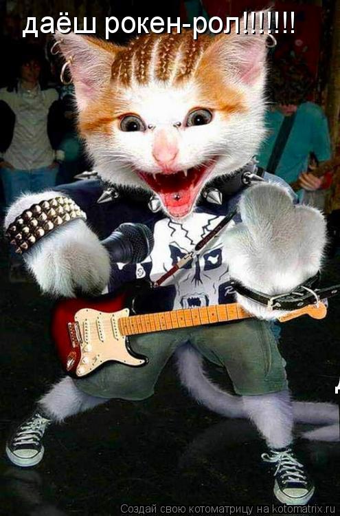 Котоматрица: даёш рокен-рол!!!!!!! даёш рокен-рол!!!!!!!