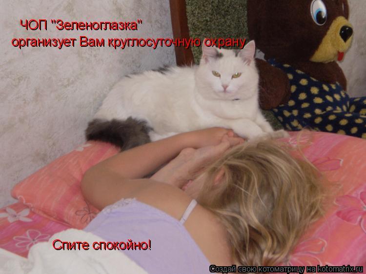 """Котоматрица: ЧОП """"Зеленоглазка"""" организует Вам круглосуточную охрану Спите спокойно!"""