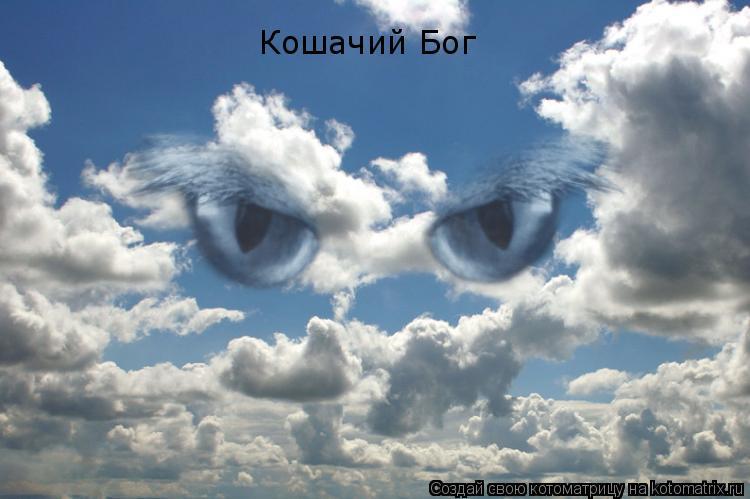 Котоматрица: Кошачий Бог
