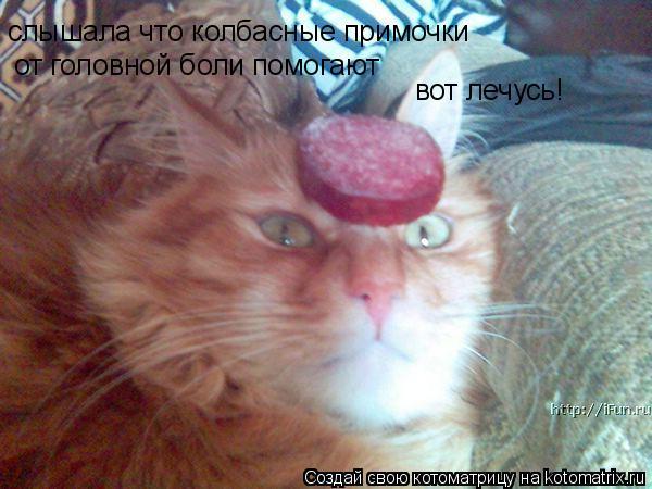 http://kotomatrix.ru/images/lolz/2008/08/27/9.jpg