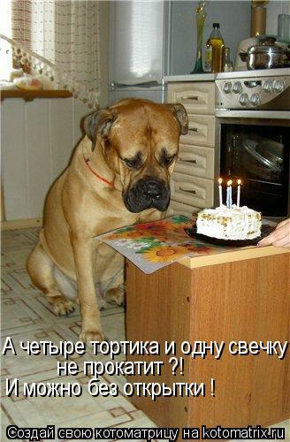Котоматрица: А четыре тортика и одну свечку - не прокатит ?! И можно без открытки !