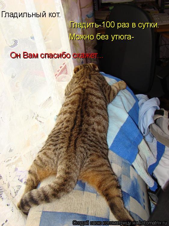 Котоматрица: Гладильный кот. Гладить-100 раз в сутки. Можно без утюга- Он Вам спасибо скажет...
