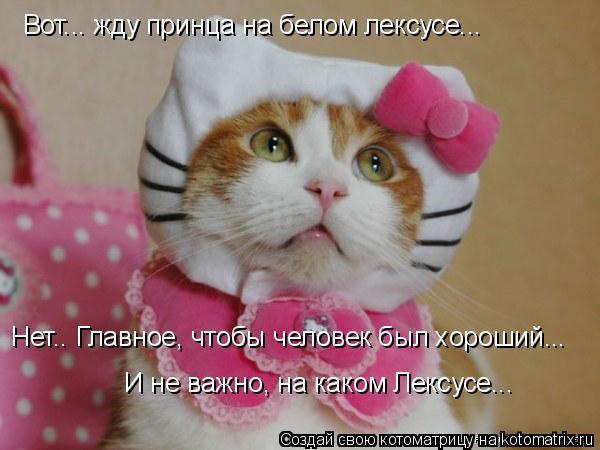 http://kotomatrix.ru/images/lolz/2008/08/27/SW.jpg