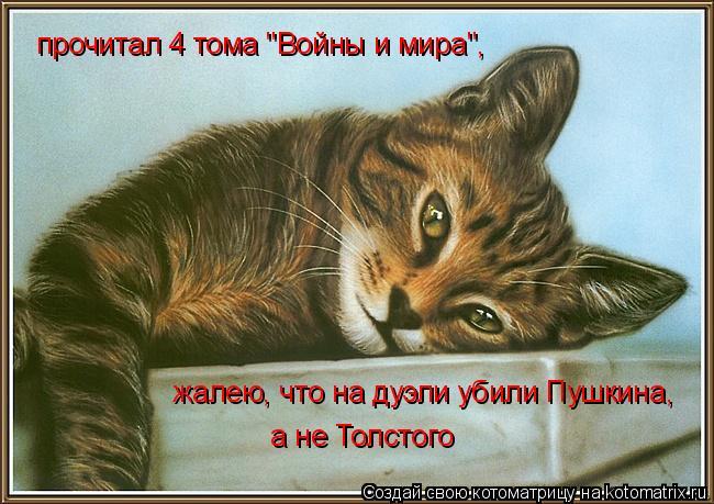 """Котоматрица: прочитал 4 тома """"Войны и мира"""",   жалею, что на дуэли убили Пушкина,  а не Толстого"""