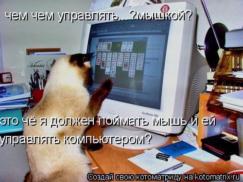 Котоматрица: чем чем управлять...?мышкой? это чё я должен поймать мышь и ей  управлять компьютером?