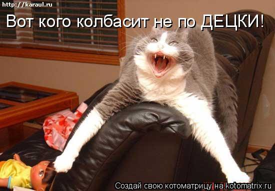Котоматрица: Вот кого колбасит не по ДЕЦКИ!