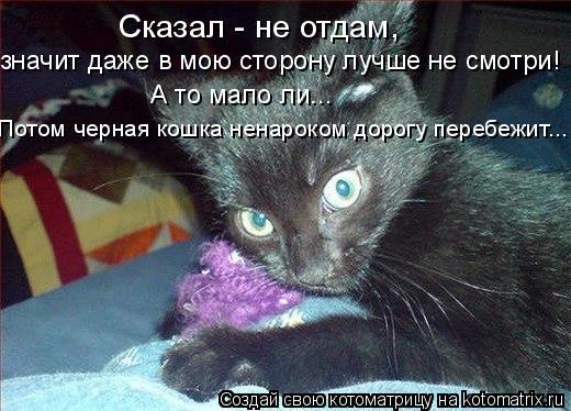 Котоматрица: Сказал - не отдам, значит даже в мою сторону лучше не смотри! А то мало ли...  Потом черная кошка ненароком дорогу перебежит...