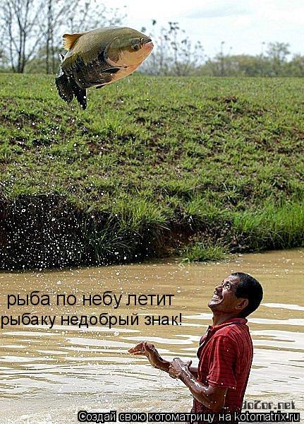 Котоматрица: рыба по небу летит рыбаку недобрый знак!