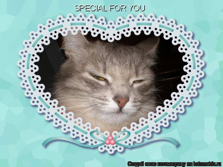 Котоматрица: SPECIAL FOR YOU